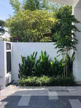 Lorong Bandang 5 Bedrooms Terraced House for Sale 2