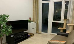 The Hillford Jalan Jurong Kechil Condo for Sale